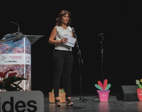 presentacio Flors d Honor 2017 - Viles Florides