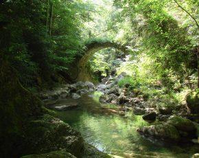 Vall de Bianya obtiene la distinció de Vila Florida