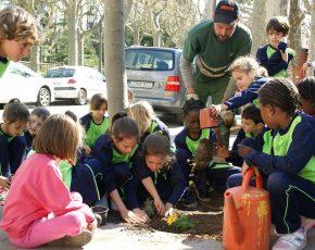 Los escolares de Olot participan del proyecto Viles Florides