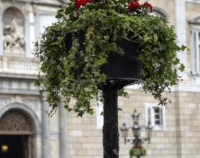 Barcelona posa en marxa el Pla de Flors 2014-15