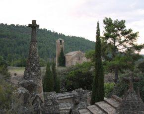 Olius nou municipi florit