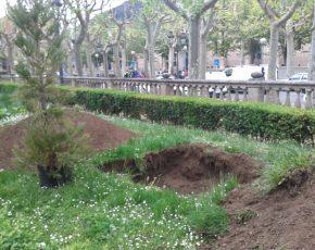 Ins La Garrotxa Cicle Jardineria i Floristeria