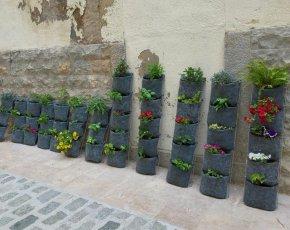 """""""Jardins al carrer, Jardins per a tothom"""""""