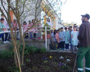 Activitats Escola Volca Bisaroques - Viles Florides