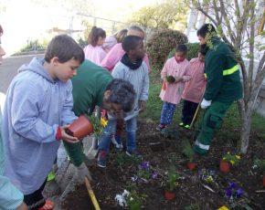 Escola Volca Bisaroques - Viles Florides