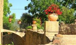 Mur amb flors Casa Rural Marcus - Viles Florides