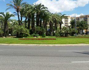 palmeres Salou - Viles Florides
