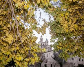 fulles Sant Cugat del Valles - Vila Florida