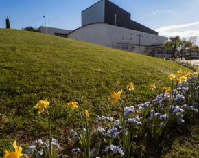 flors sant cugat del valles - Vila Florida