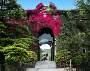 El Castell Seu Urgell - Viles Florides