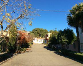 Raimat vila florida de Lleida