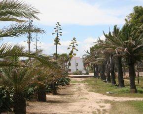 Altafulla - Viles Florides
