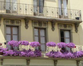 Balco La Seu Urgell - Viles Florides