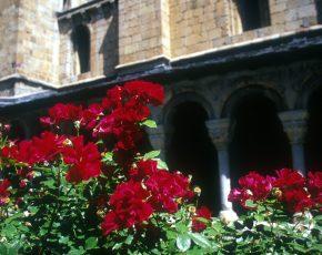 Catedral Seu Urgell - Viles Florides