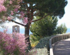 Malgrat de Mar ja és un nou municipi florit