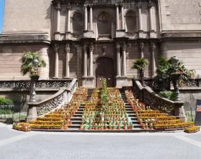L'Em Primavera't d'Olot omple el municipi de flors